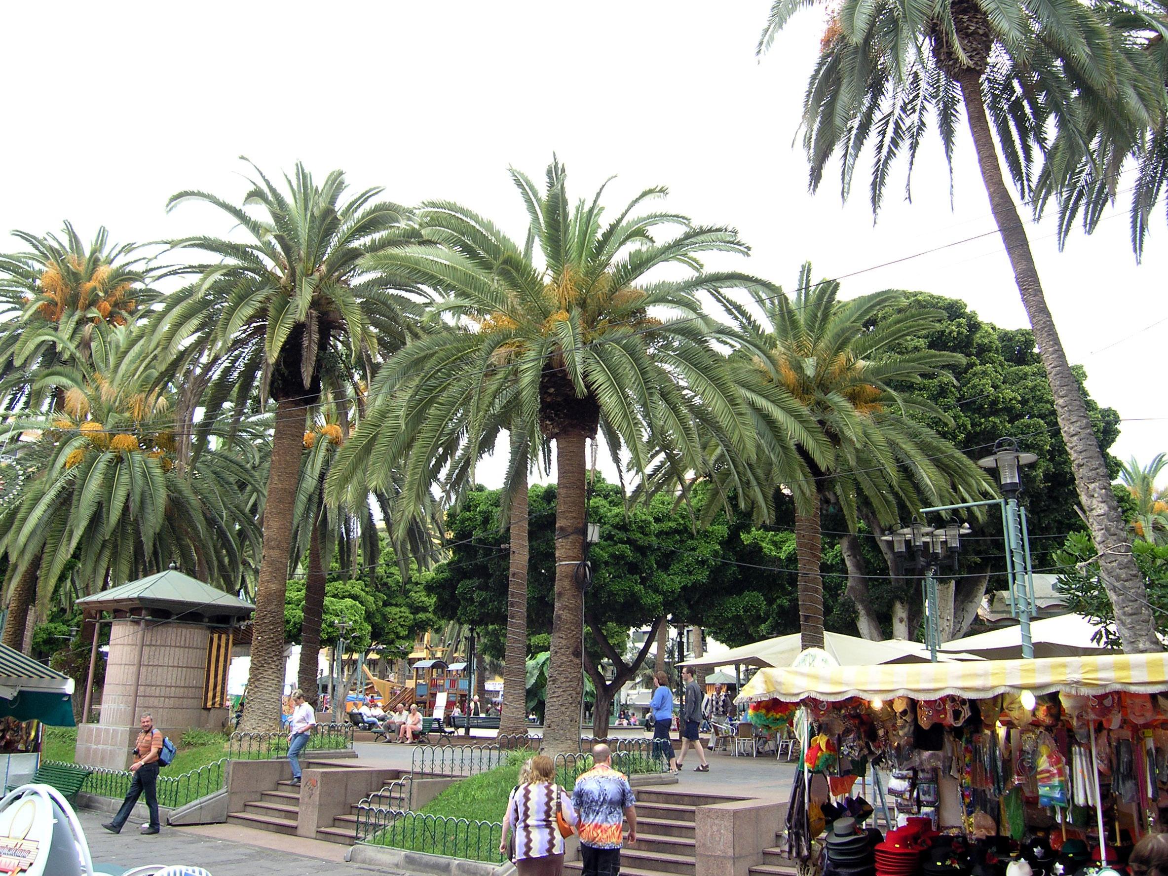 El casco urbano de Puerto de la Cruz alberga 553 empresas en 51 calles